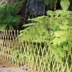 庭園造景材料